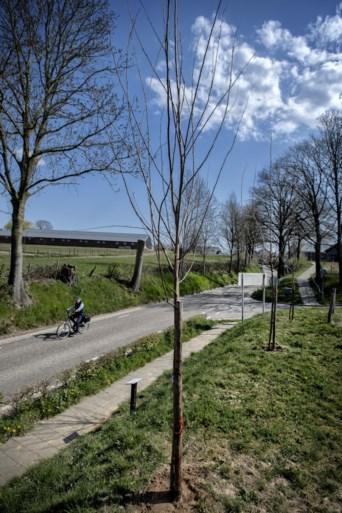 Levende herinnering in Ubachsberg aan de bevrijding