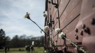 Week 31: Westerbork bevrijd en Hoensbroekenaar sterft bizarre dood