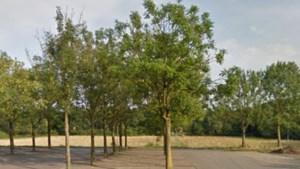 Veiligheidsregio sluit parkeerplaats in Heerlense wijk Molenberg