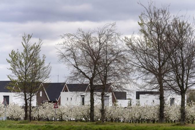 Maasgouw trekt beurs voor verplaatsing kersenboomgaard