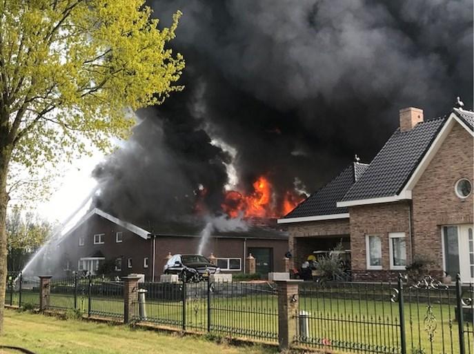 Video: Zeer grote brand verwoest drie kippenstallen