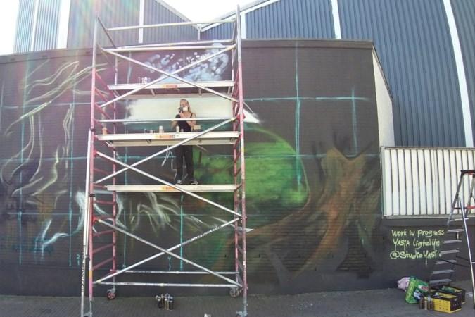 Limburgs landschap in schildering op blinde muur Gulpener