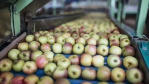 Protocol moet voor boeren en hun personeel duidelijkheid geven over coronaregels