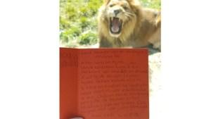 Peuter (3) zou zó graag naar Gaia willen om leeuwen te zien