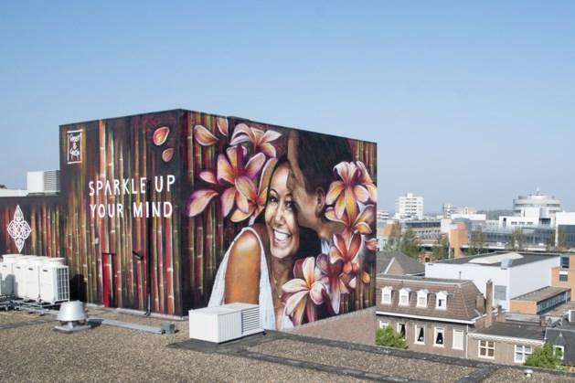 Mural in Heerlen ter ere van Lianne en haar naslagwerk