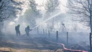 Vuur legt tientallen hectares natuur in de as: 'Hopen dat er meer regen gaat vallen'