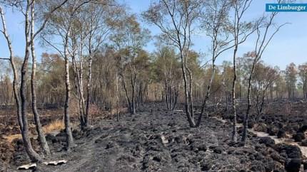 Deurnese Peel: brand meester, maar kans op opflakkerende veenbrand blijft reëel