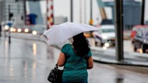 Maandag nog even van zon genieten: na Koningsdag week vol regen