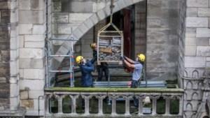 Bouwvakkers weer aan de slag bij Notre-Dame