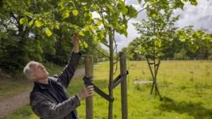 Welzijnswerker Jos Reinders stopt na 44 jaar: 'Hoe chic is het dat ik dit heb mogen doen'