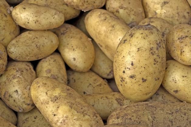 Susterse aardappelen verkopen ook in Stein en Landgraaf