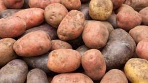 Een verkooppunt voor aardappelen, om de lokale boerin te helpen