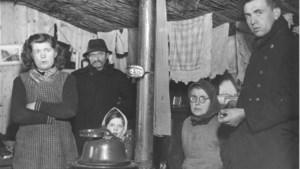 Na de bevrijding: misère in 'concentratiekamp' Limburg