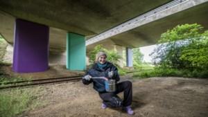 Genoeg uitdagingen voor kunstenares Tanja Ritterbex in geboortedorp Bocholtz