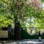 'Meer incidenten in asielzoekerscentra'