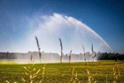 Waterschap Limburg kondigt vanwege droogte verbod op gebruik water uit beken en sloten af