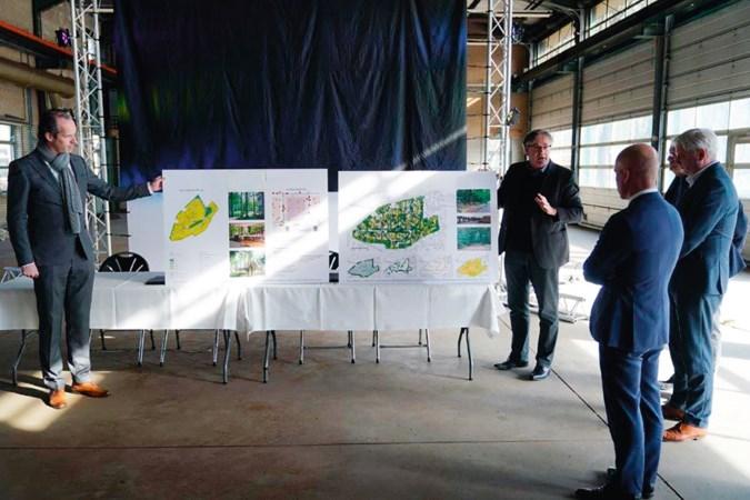 Grondspeculatie, bomenkap en vriendendiensten: zo krijg je een droomhuis in Limburg