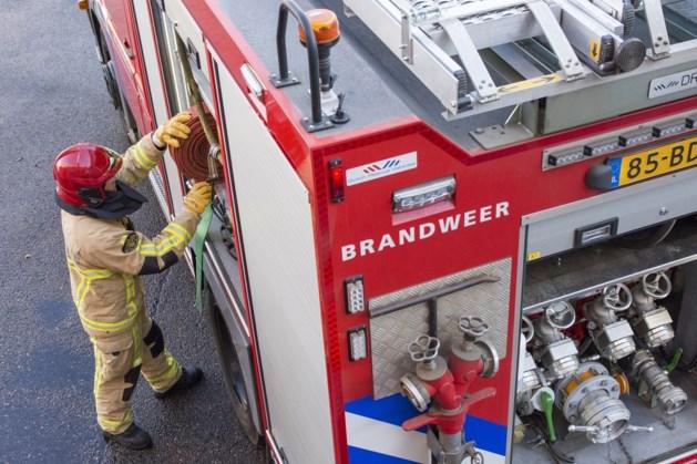Brandweer redt bewoonster uit pand
