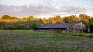 SP: Onderzoek geheime deal Ruimte voor Ruimte in Horst aan de Maas