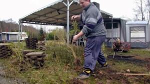 Oostappen krijgt vier maanden om einde te maken aan illegale huisvesting op De Berckt in Baarlo
