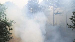 Twee bosbranden in Selfkant mogelijk aangestoken
