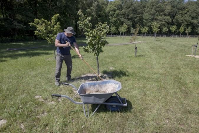 Gelener zoekt met plan voor zorgboerderij in Schinveld de grens op