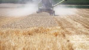 Ruzie tussen overheden over grond belet aanpak droogte in Limburg