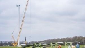 Bouw windmolens Heibloem afgerond: eerste stroom voor het net