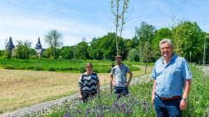 Oeps... Vlindertuin in Hoensbroek per abuis gemaaid door aannemer