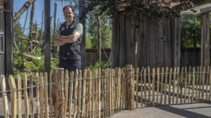 GaiaZoo in Kerkrade opent na gedwongen sluiting weer de poort: houd minimaal een flamingo afstand