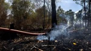 Roken en blussen gaan door in verbrande Peel: 'Het is continu improviseren'