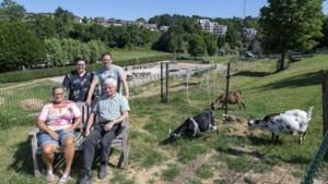 Valkenburg krijgt er een 'Brabantse' kinderspeelboerderij bij
