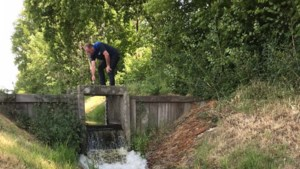 Waterschap start proef tegen droogte in natuurgebied Waterbloem in Leudal