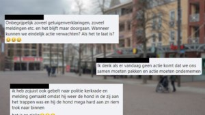 Online jacht op vermeende hondenmishandelaar: 'Dit gaat mis'