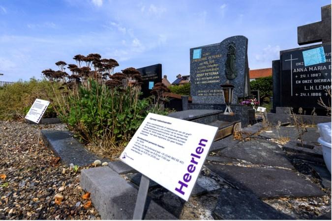 Hoensbroekenaar waarschuwt nabestaanden voor kaalslag op oude kerkhoven