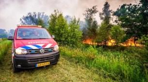 Brand in natuurgebied Deurnsche Peel opnieuw opgelaaid