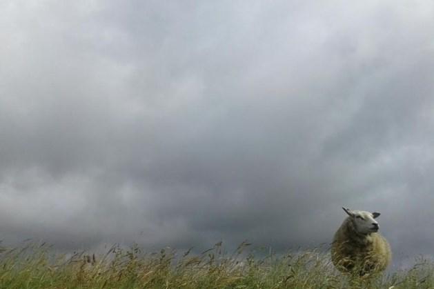 Komende dagen alleen maar wolken, wind en regen