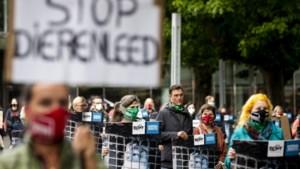 Ruim 100 demonstranten voor eerder sluiten nertsenfokkerijen
