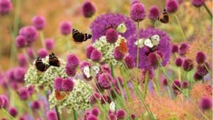 Beekdaelen laat onderzoek doen naar bodemkwaliteit