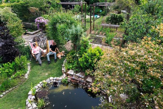 De alles-in-één-tuin van Stefan en Sandra in Bunde