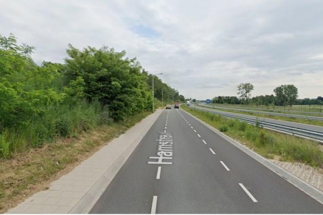 Hamstaat in Kerkrade afgesloten wegens werkzaamheden