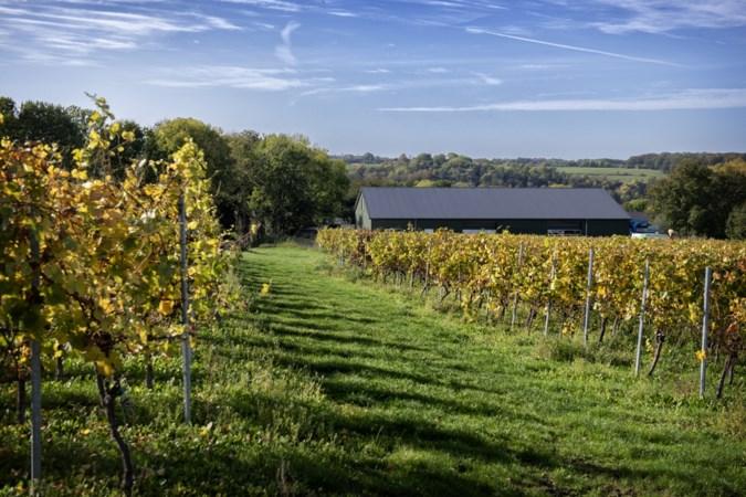 Wijnboer wil loods op Fromberg ook slopen, maar daarna vervangen door 'groener' alternatief