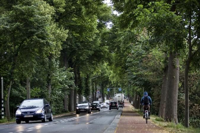 Maastricht wijst hernieuwd verzoek af om vrachtwagens te weren van drukke Tongerseweg