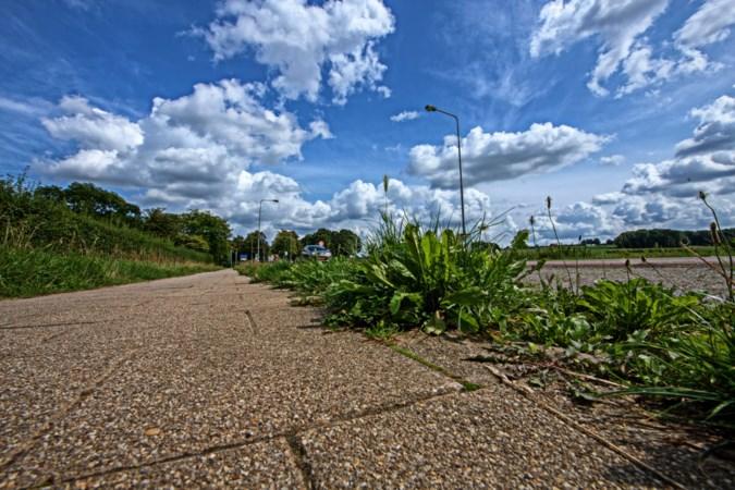 Heerlen investeert twee ton per jaar extra in groenonderhoud