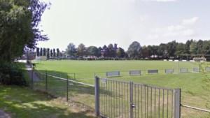 Biologische manier van onderhoud voetbalvelden in Stein