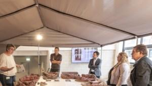 Kapel, tuin en beelden Antoniushof in Heerlen op initiatief van de buurt hersteld