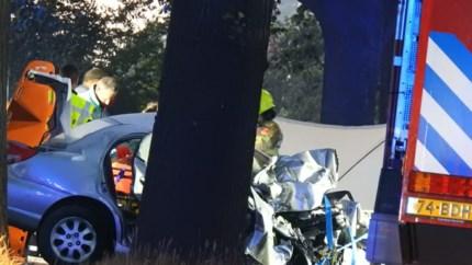 Automobilist zwaargewond na aanrijding met vrachtwagen