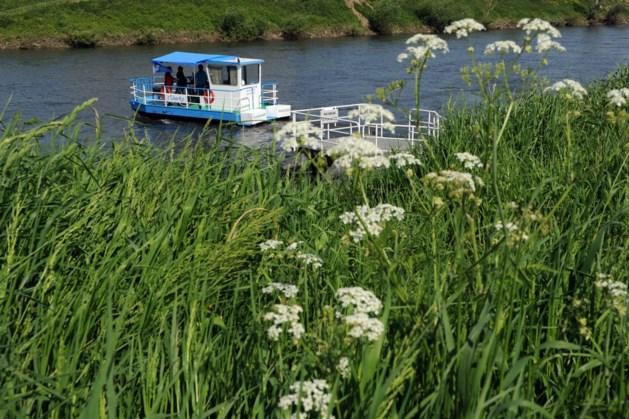 Fiets- en voetveren over Grensmaas gaan weer varen