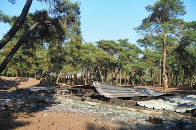Verdachte in beeld na brandstichting Safaripark Beekse Bergen waarbij tien dieren omkwamen