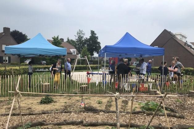 Wijkbewoners Tichelveld vieren aanplant moes- en kruidentuin